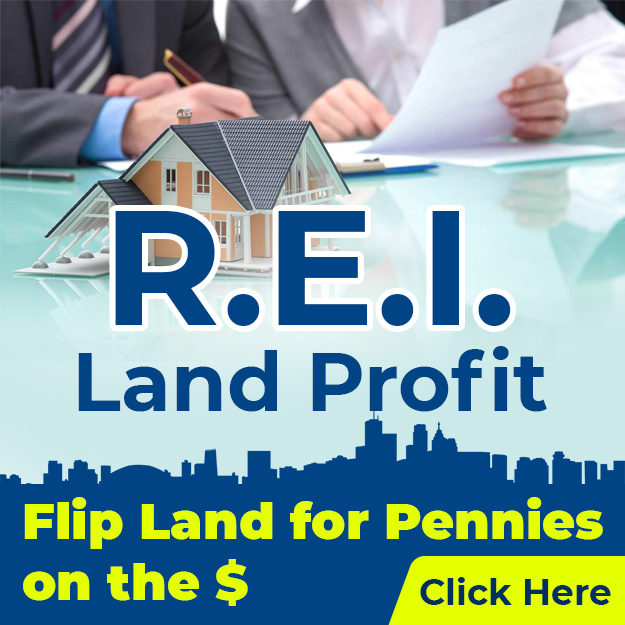 REI Diamonds Land Profit - Flip Land for Pennies