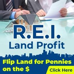 REI Diamonds Land Profit - Flip Land for Pennies